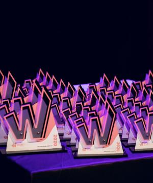 Razglaseni-WEBSI-Spletni-prvaki-2020